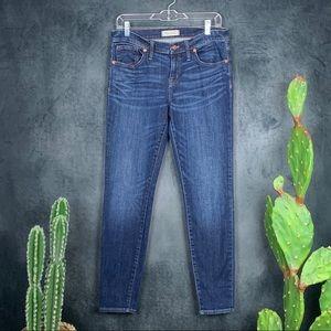 Madewell Skinny Skinny Jeans Riverdale Wash  A425